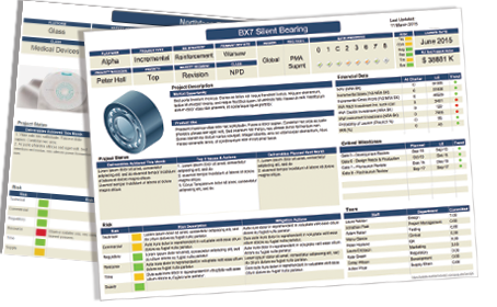 Smart PPM Software - Phase Gate Process Project Management - Project on a page 1 click program management reporting
