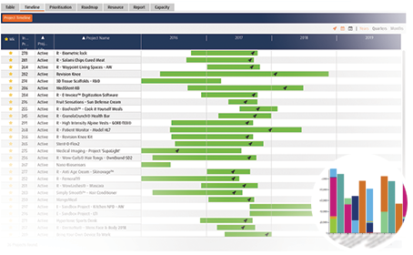 Smart PPM Software - Strategic Planning Project Portfolio - Developing a balanced portfolio screenshot