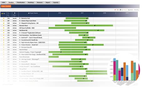 Smart PPM Software - Strategic Planning Project Portfolio - Developing a balanced portfolio screenshot