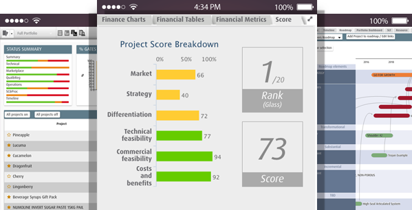 Smart PPM Software - Prioritization - Dashboards for Innovation NPD and R&D Management