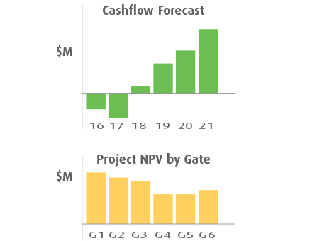 Smart PPM Software - Phase Gate Process Project Management - Financial forecast metrics example of NPV by gate