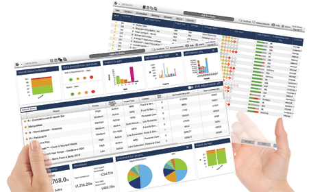 Example of Project Portfolio Management software dashboard - PPM Software for PMO, NPD & Innovation Teams