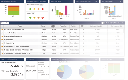 Example of strategic planning dashboard - Project portfolio management software